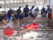 Thị trường - Tiêu dùng - Phản đối Mỹ giám sát cá tra, ba sa của Việt Nam