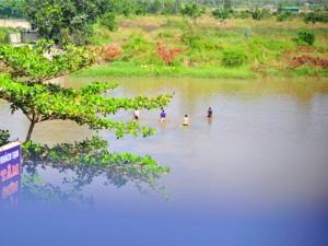 Tin tức trong ngày - Theo chân cá đồng vùng nhiễm dioxin ra chợ
