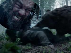"""Phim - Leonardo DiCaprio bị gấu """"sàm sỡ"""" trên phim trường"""