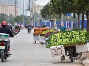 Thị trường - Tiêu dùng - Phố hoa quả giá rẻ bán rong ở Hà Nội