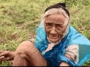 Tin tức trong ngày - Gặp cụ bà 90 tuổi mò cua bắt ốc nuôi thân ở Hà Nội