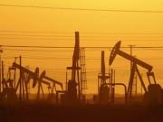 Thị trường - Tiêu dùng - Giá dầu sẽ xuống mức 20 USD/thùng?