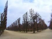 """Du lịch - """"Khu vườn quyền lực"""" ở di sản văn hóa Schönbrunn"""