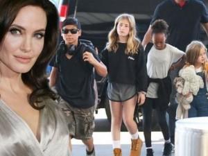 Phim - Angelina Jolie bị lên án vì... cho con cưỡi voi