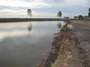 Tin tức Việt Nam - Rủ nhau tắm sông, hai anh em họ chết đuối thương tâm