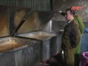 Thị trường - Tiêu dùng - Liên tiếp phát hiện 2 xưởng nấu mỡ bẩn cực lớn ở HN