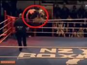 """Thể thao - Võ sĩ bị """"tăng động"""" sau khi dính đòn knock-out"""