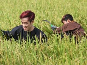 Thời trang - Thí sinh Project Runway Vietnam bất ngờ đi gặt lúa
