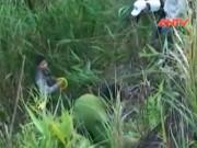 Video An ninh - Xe máy lao xuống vực, 1 người chết, 1 người nguy kịch