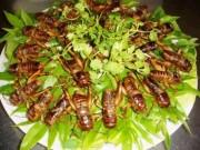 Ẩm thực - Những món Việt tuyệt ngon nhưng nguy hiểm cho sức khỏe