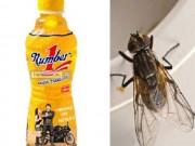 Tin tức trong ngày - Vụ chai nước có ruồi: Bộ Công Thương lên tiếng