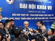 Bóng đá Việt Nam - Thay hết VFF