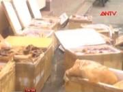 Video An ninh - Phát hiện hơn 1 tấn thịt bốc mùi trên xe khách