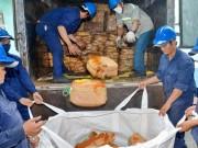 Xuất nhập khẩu - Đường lậu ùn ùn về TP HCM