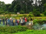 Tin tức Việt Nam - Phát hiện xác chết đang phân hủy trong ruộng rau muống