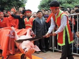 Tin tức trong ngày - Tiếp tục tổ chức lễ hội chém lợn phản cảm?