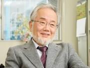 Nobel Y học 2016 vinh danh nhà khoa học Nhật Bản