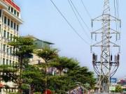 Tin tức trong ngày - HN: Kỳ lạ hàng trăm cây xanh trồng dưới đường điện cao thế