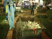 Vụ cá chết ở Hồ Tây: Vì sao phóng viên khó tiếp cận nơi chôn cá?