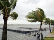 Biển Đông sắp đón bão số 7 với cường độ mạnh