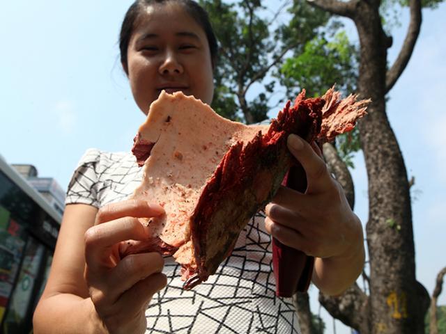 Tiếc nuối hàng cây Kim Mã, dân nhặt vỏ cây làm kỉ niệm