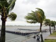 Bão số 7 tiến gần bờ, Quảng Ninh bắt đầu mưa to