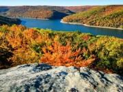 Du lịch - Khu rừng bí mật đẹp mê hồn trong lòng nước Mỹ