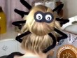 Tự tết kiểu tóc con nhện cực yêu cho đêm Halloween