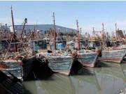Thế giới - Tàu chiến Hàn Quốc lần đầu nã súng máy vào tàu cá TQ