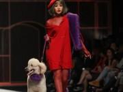 Chi Pu hờ hững vai trần dắt chó 1000 USD lên sàn catwalk