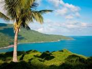 Sơn Trà- Hòn ngọc xanh giữa lòng phố biển