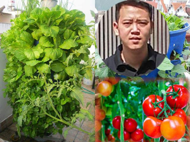 Chàng trai bỏ lương cao về trồng rau vì sợ chết sớm