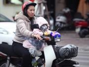 Tin tức trong ngày - Không khí lạnh tăng cường, Bắc Bộ chìm trong giá rét