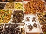 Thế giới - Đan Mạch: Ăn côn trùng, máu và não để... cứu thế giới
