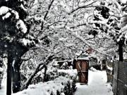Du lịch - Nghẹt thở vì vẻ đẹp của ngôi làng tuyết phủ ở Ấn Độ