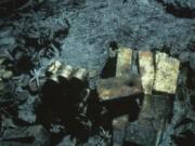 Tù nhân nắm giữ bí mật kho vàng 3 tấn lớn nhất nước Mỹ