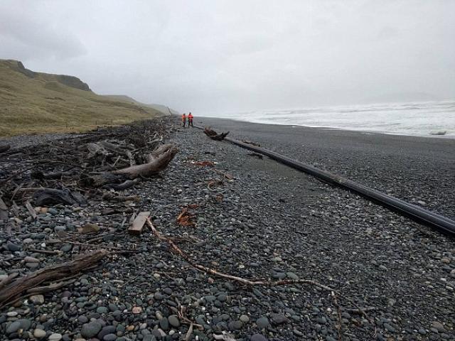 Vật thể bí ẩn màu đen dài 100m dạt bờ biển New Zealand