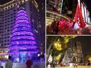 """Tin tức trong ngày - Ngắm những cây thông Noel """"khổng lồ"""" tại Hà Nội"""