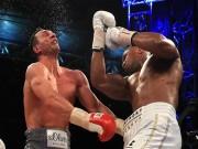 """Nóng mắt Vua quyền Anh, nhà Klitschko """"gọi hội"""" đòi rửa hận"""