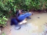Tin tức trong ngày - Phát hiện người đàn ông chết bất thường dưới cống nước