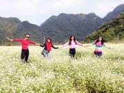 Du lịch - Bất ngờ với thung lũng tam giác mạch tuyệt đẹp chỉ cách Hà Nội 160km