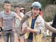 Tin tức trong ngày - Rùng mình xem lại cảnh người dân vây bắt những con rắn khổng lồ