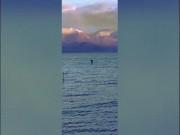 Nhìn thấy quái vật hồ Loch Ness đi nghỉ lễ Giáng sinh?