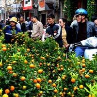 Lịch nghỉ Tết Nguyên đán 2011