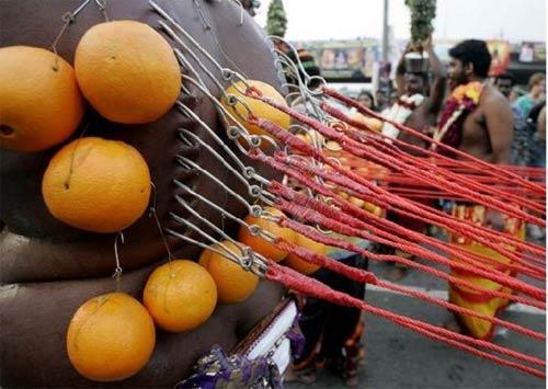 Hành xác tại lễ hội Thaipusam - 2