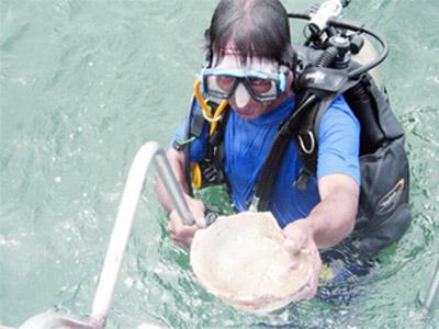 Hành trình tìm kho báu dưới đáy biển (Kỳ 3) - 1