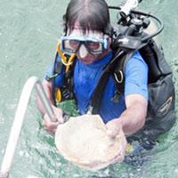 Hành trình tìm kho báu dưới đáy biển (Kỳ 3)