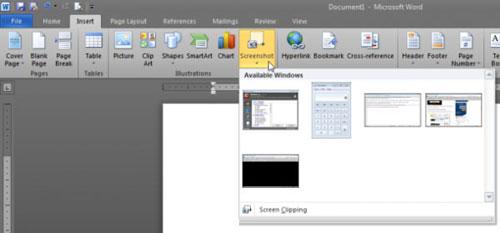 Chụp và chỉnh sửa ảnh màn hình với MS Word 2010 - 1