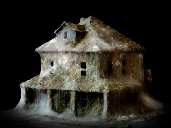 Những ngôi nhà hoang... rởm - 2