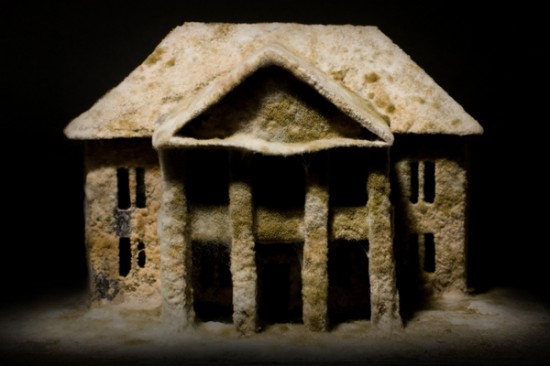 Những ngôi nhà hoang... rởm - 4